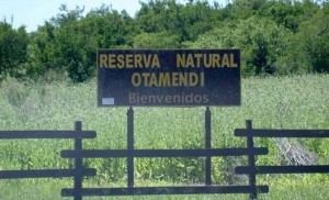 Reserva Natural Otamendi