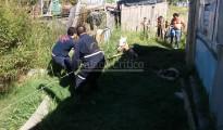 Bomberos Rescate Caballo (1)