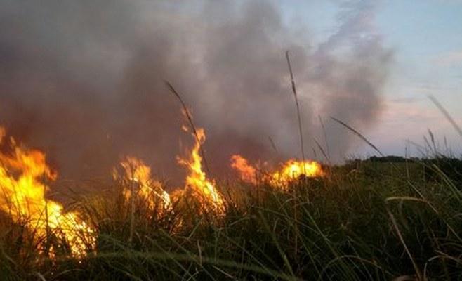 Incendio Reserva Natural