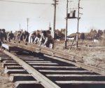 Tren Campana